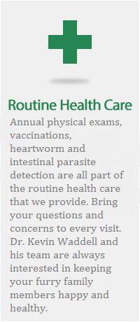 routine health care