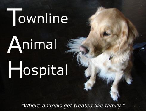 Townline Animal Hospital company